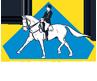 Incitatus Escola de Equitação